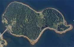 Загадка острова Оук